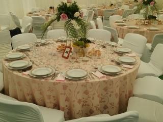 cort-de-nunta_3